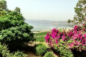 Blog - Israel Day 5 - Sea of Galilee